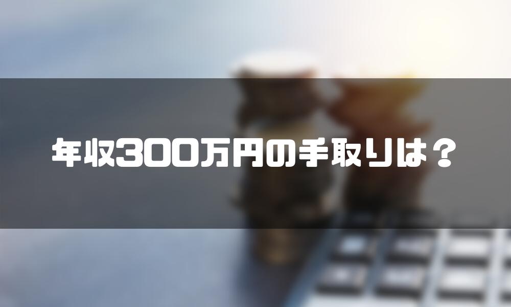 年収300万_手取り_手取り