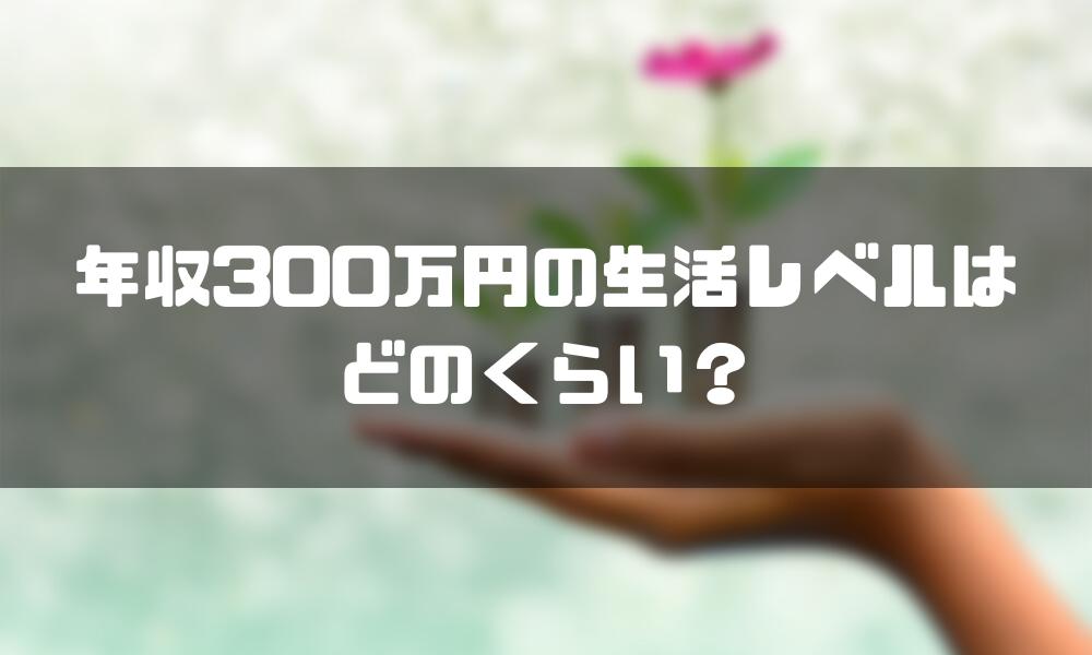 年収300万_手取り_生活レベル